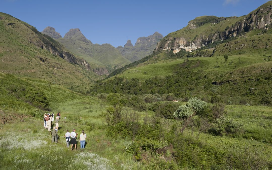 Explore the best Drakensberg on the Ribbon Falls Hike